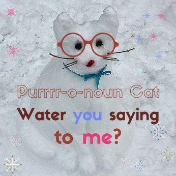 Pronoun Cat (4)