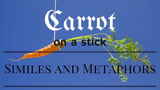 Carrot (1)